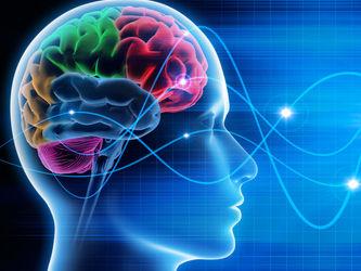 мозъчна стимулация и концентрация